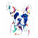 Water Color DOG - Tatuaj...